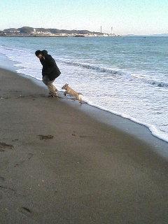 海とミーク